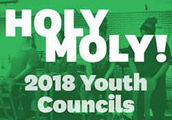 Youth Councils 2018 Article